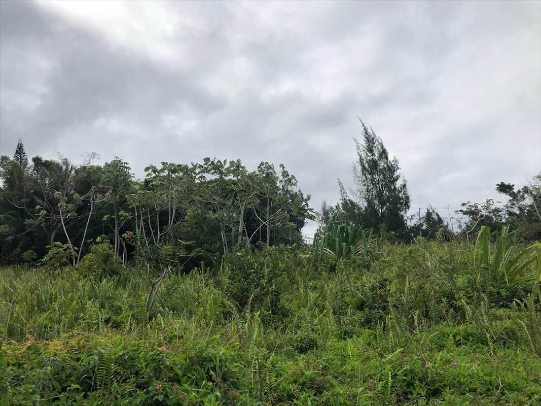 https://bt-photos.global.ssl.fastly.net/hawaii/orig_boomver_1_636518-2.jpg