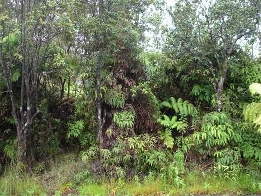 Address Not Published, Volcano, HI 96785 (MLS #636862) :: Song Real Estate Team   LUVA Real Estate