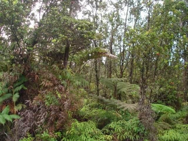 Mokuna Rd, Volcano, HI 96785 (MLS #636871) :: Song Real Estate Team | LUVA Real Estate