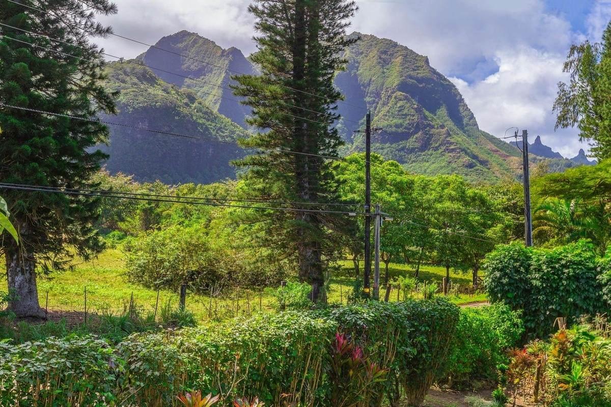 https://bt-photos.global.ssl.fastly.net/hawaii/orig_boomver_1_636935-2.jpg