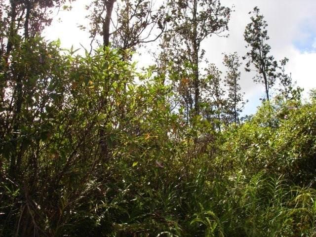 38TH AVE, Keaau, HI 96760 (MLS #637152) :: Song Team   LUVA Real Estate