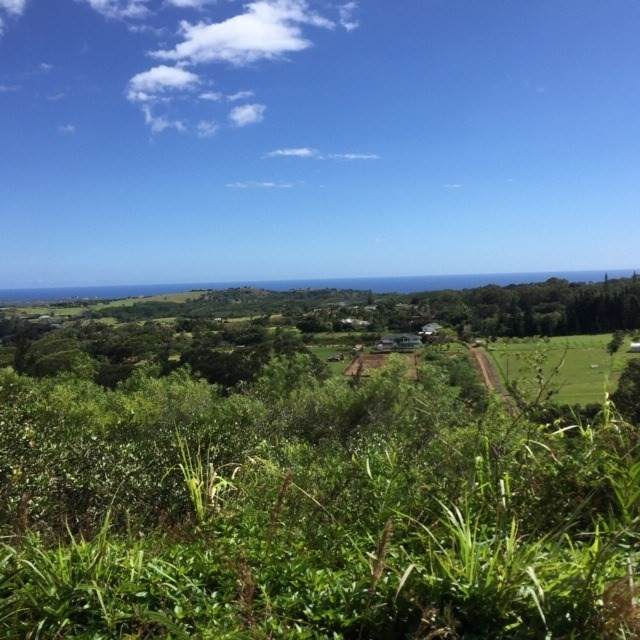 4560-R Uha Rd, Lawai, HI 96765 (MLS #637173) :: Elite Pacific Properties