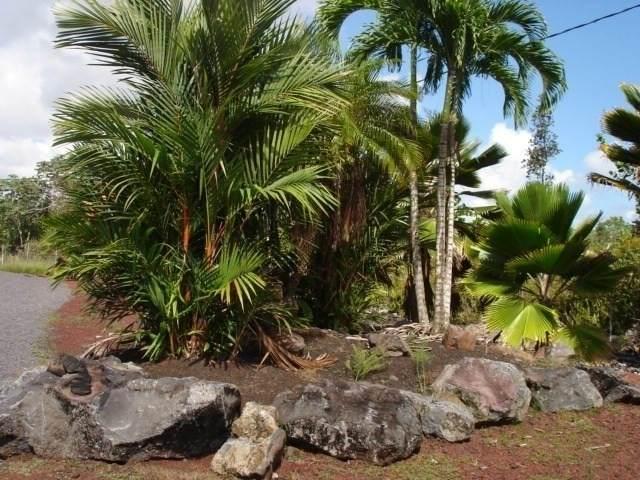 https://bt-photos.global.ssl.fastly.net/hawaii/orig_boomver_1_637247-2.jpg