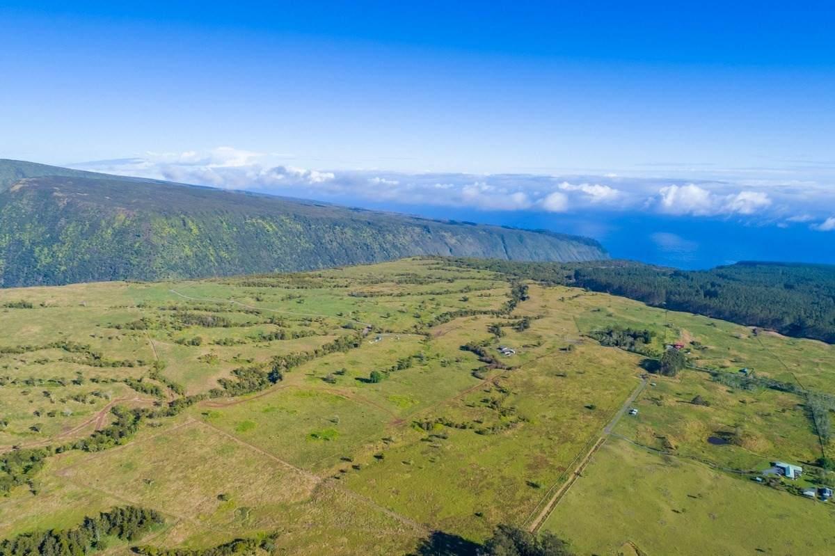 https://bt-photos.global.ssl.fastly.net/hawaii/orig_boomver_1_637262-2.jpg