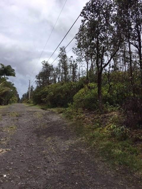 Road 5 (Uau), Mountain View, HI 96771 (MLS #637617) :: Aloha Kona Realty, Inc.