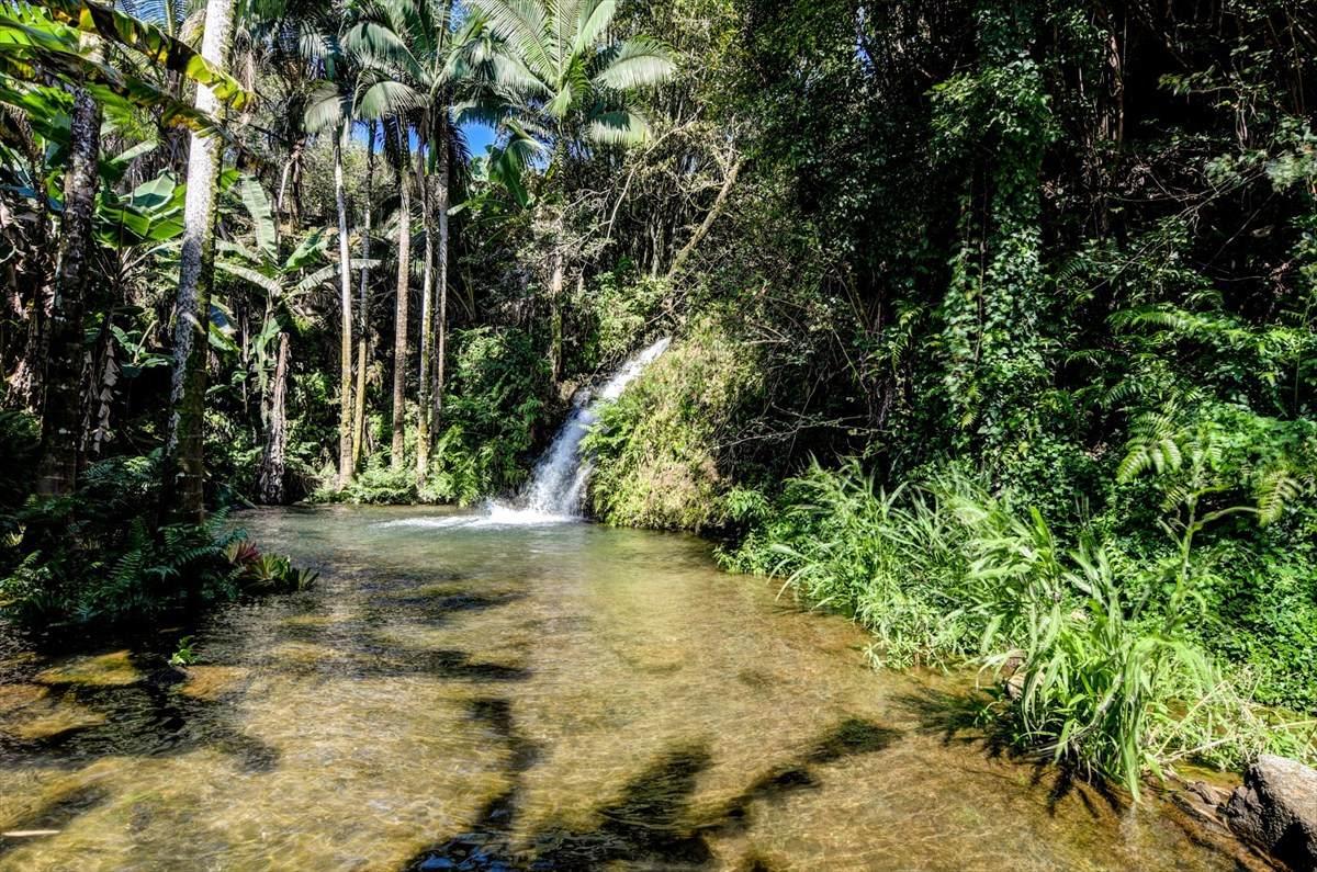 https://bt-photos.global.ssl.fastly.net/hawaii/orig_boomver_1_637718-2.jpg