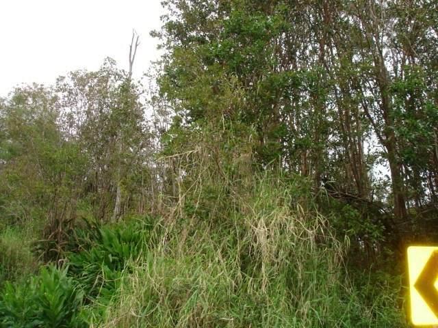 Ua Nahele Street, Hilo, HI 96720 (MLS #637824) :: Song Team | LUVA Real Estate