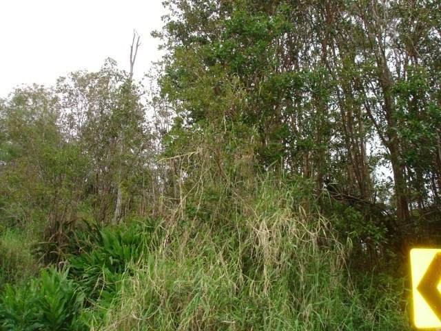 Ua Nahele Street, Hilo, HI 96720 (MLS #637824) :: Iokua Real Estate, Inc.