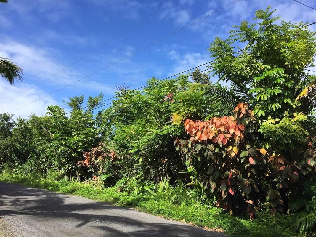 https://bt-photos.global.ssl.fastly.net/hawaii/orig_boomver_1_637864-2.jpg