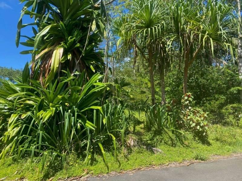 https://bt-photos.global.ssl.fastly.net/hawaii/orig_boomver_1_637894-2.jpg