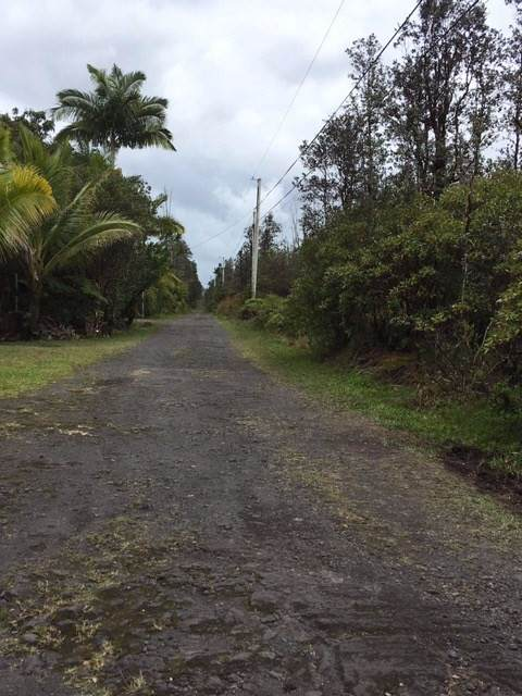 Road 5 (Uau), Mountain View, HI 96771 (MLS #637917) :: Aloha Kona Realty, Inc.
