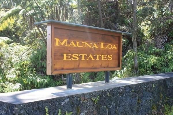 Address Not Published, Volcano, HI 96785 (MLS #637927) :: Steven Moody