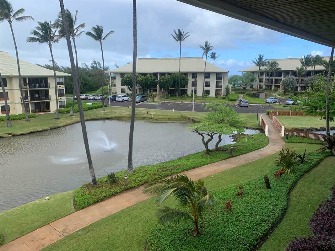 https://bt-photos.global.ssl.fastly.net/hawaii/orig_boomver_1_637940-2.jpg
