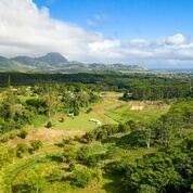 3621-D Omao Rd, Koloa, HI 96756 (MLS #638106) :: Kauai Exclusive Realty