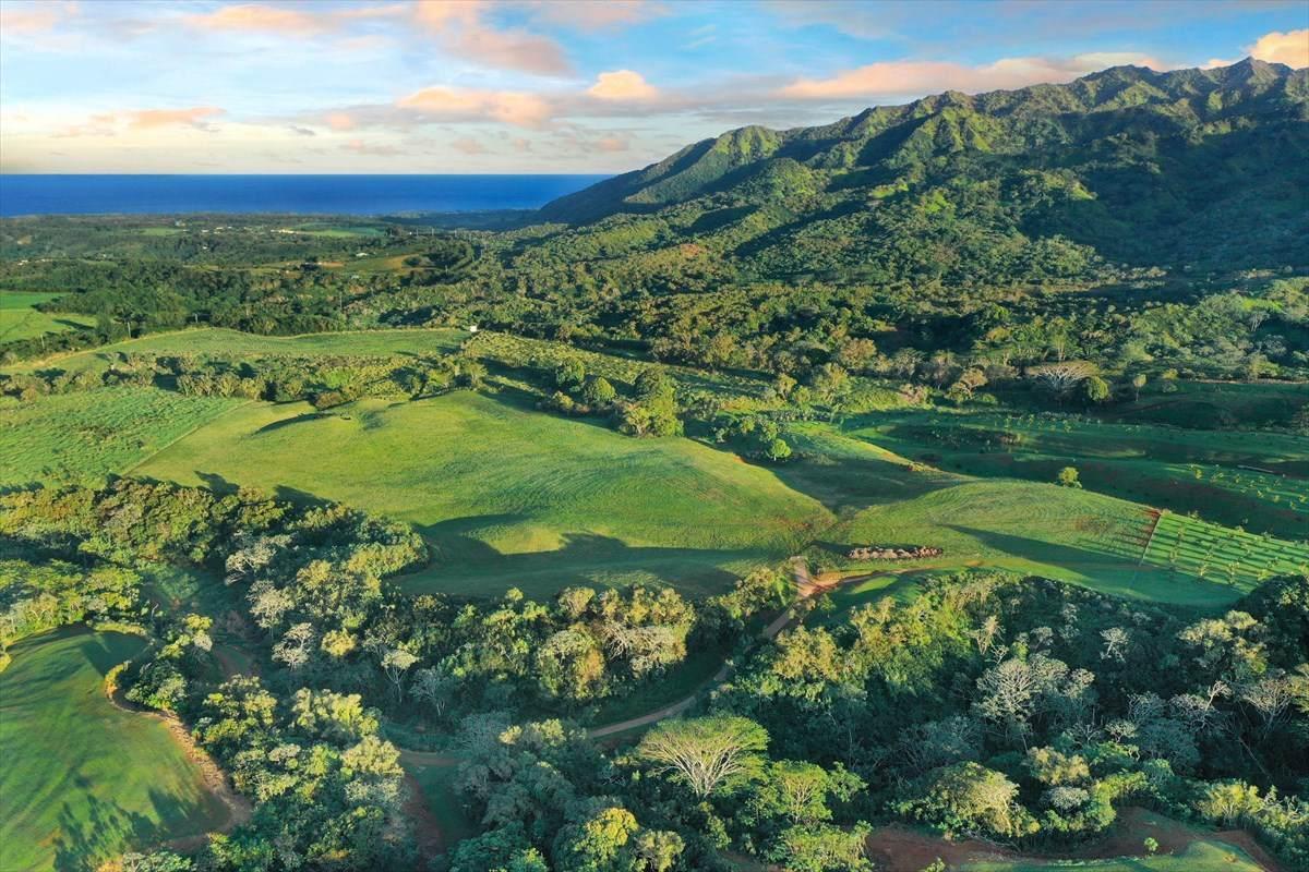 https://bt-photos.global.ssl.fastly.net/hawaii/orig_boomver_1_638189-2.jpg