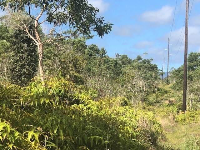 Address Not Published, Hilo, HI 96720 (MLS #638314) :: Aloha Kona Realty, Inc.
