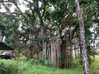 https://bt-photos.global.ssl.fastly.net/hawaii/orig_boomver_1_638485-2.jpg