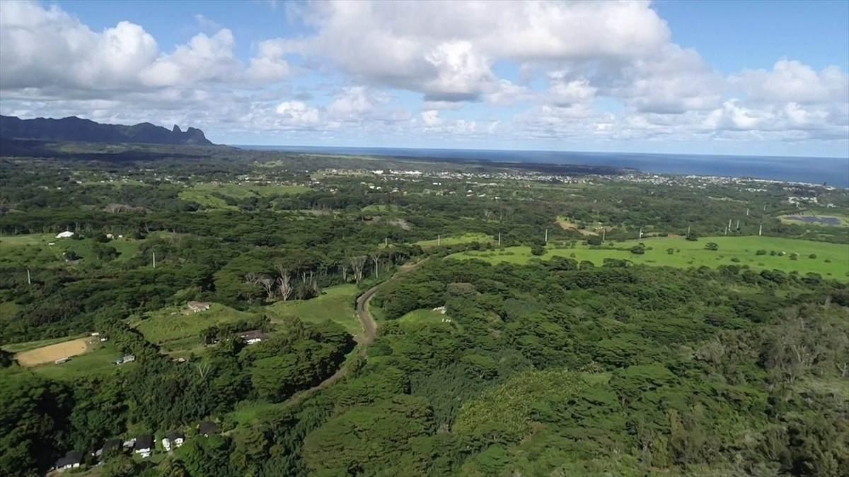 https://bt-photos.global.ssl.fastly.net/hawaii/orig_boomver_1_638782-2.jpg