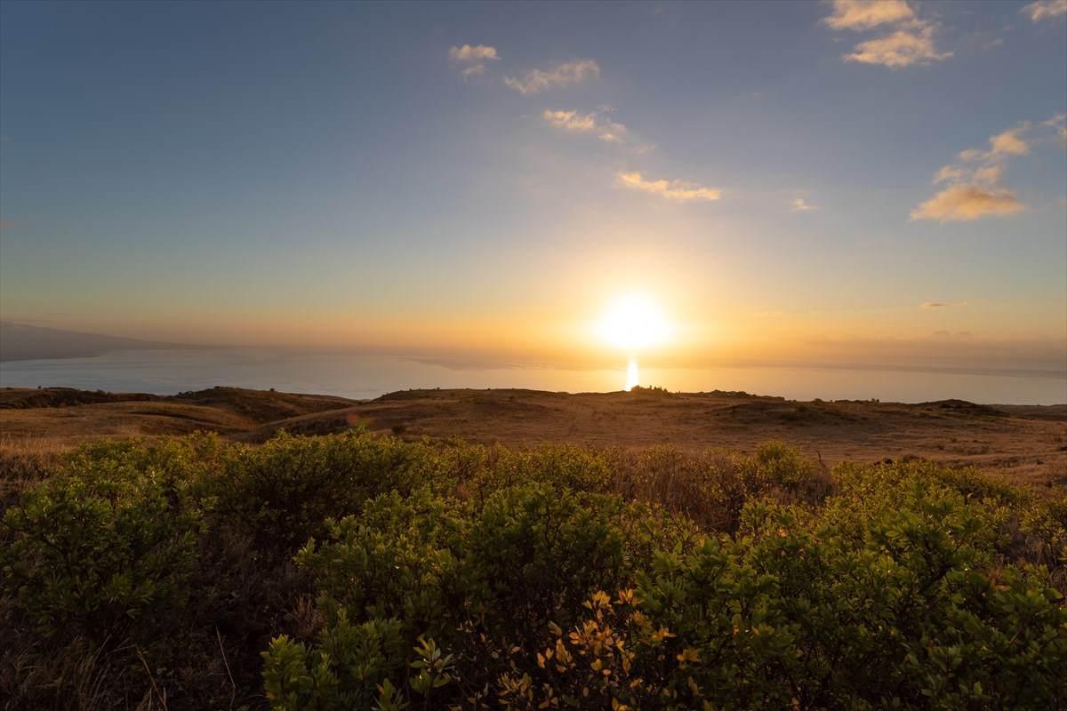https://bt-photos.global.ssl.fastly.net/hawaii/orig_boomver_1_638807-2.jpg