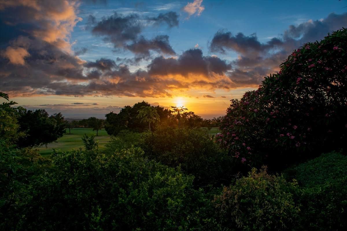 https://bt-photos.global.ssl.fastly.net/hawaii/orig_boomver_1_639023-2.jpg