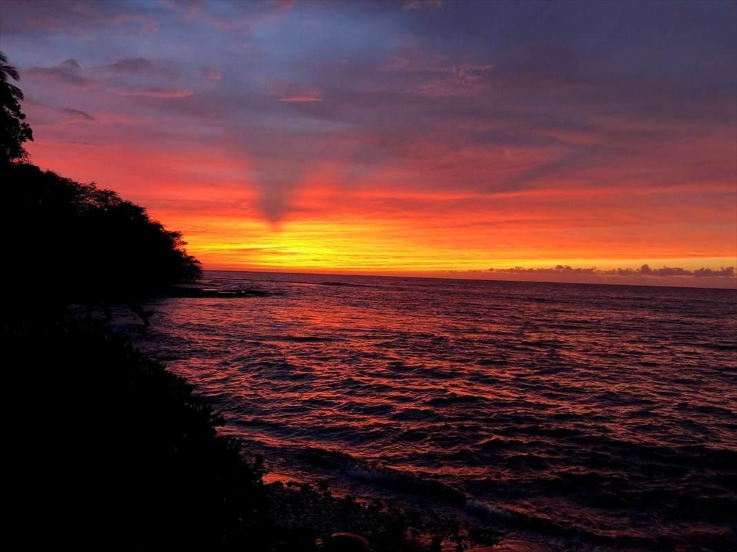 69-1766 Puako Beach Dr - Photo 1