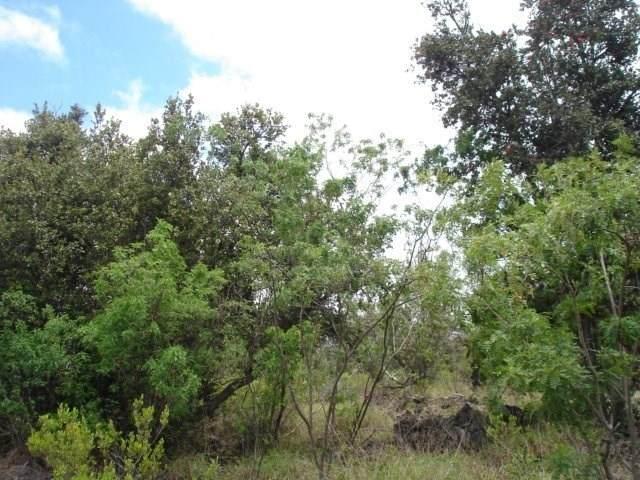 Coral Pkwy, Ocean View, HI 96704 (MLS #639352) :: Aloha Kona Realty, Inc.