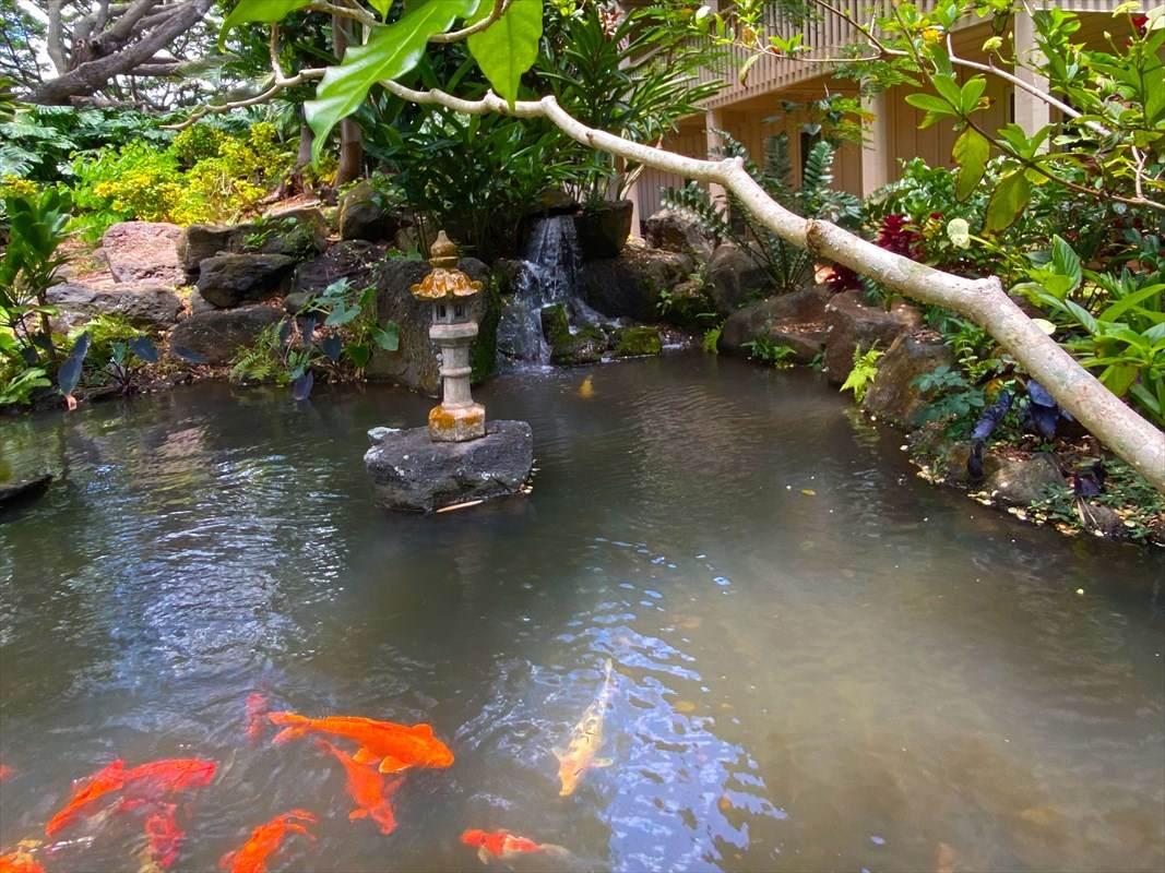 https://bt-photos.global.ssl.fastly.net/hawaii/orig_boomver_1_639439-2.jpg