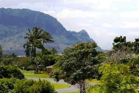 https://bt-photos.global.ssl.fastly.net/hawaii/orig_boomver_1_639474-2.jpg