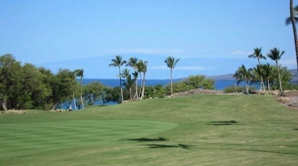 62-3721 Kaunaoa Nui Rd, Kamuela, HI 96743 (MLS #639533) :: Aloha Kona Realty, Inc.