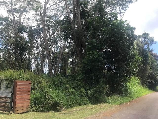 Kehau Rd, Pahoa, HI 96778 (MLS #639755) :: Elite Pacific Properties
