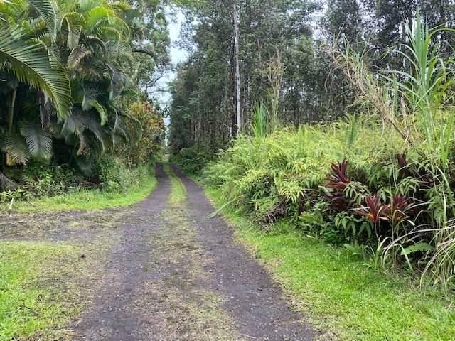 Nanawale Farms Rd, Pahoa, HI 96778 (MLS #639758) :: Aloha Kona Realty, Inc.