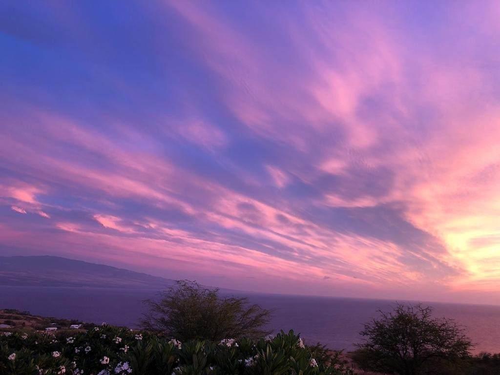 https://bt-photos.global.ssl.fastly.net/hawaii/orig_boomver_1_639760-2.jpg