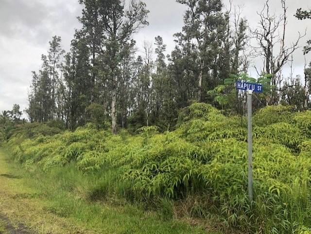 S Hapu'u St., Pahoa, HI 96778 (MLS #639764) :: Elite Pacific Properties