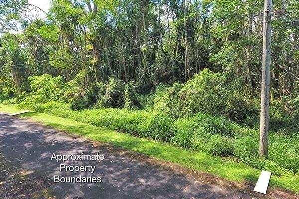 S Nehu St, Pahoa, HI 96778 (MLS #640125) :: Elite Pacific Properties