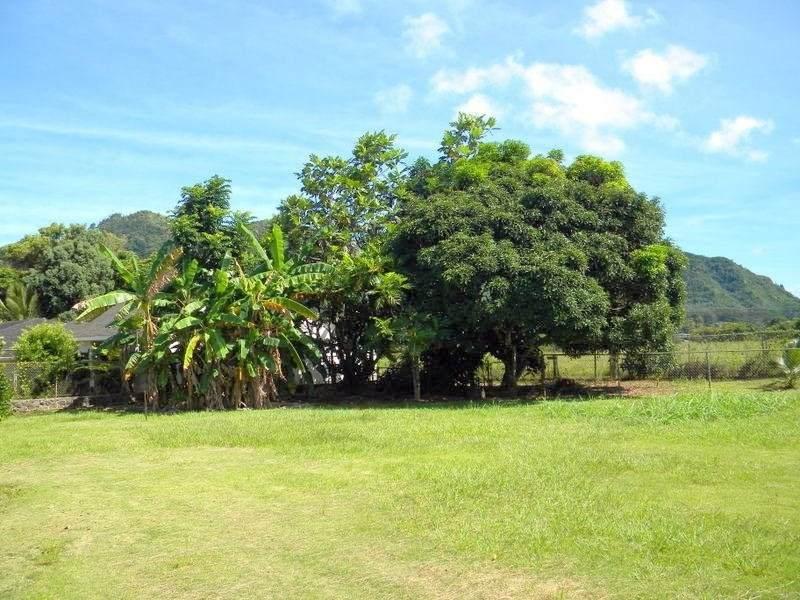 https://bt-photos.global.ssl.fastly.net/hawaii/orig_boomver_1_640293-2.jpg