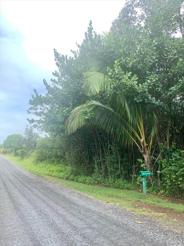 11TH AVE (KIKA), Keaau, HI 96749 (MLS #640333) :: Aloha Kona Realty, Inc.