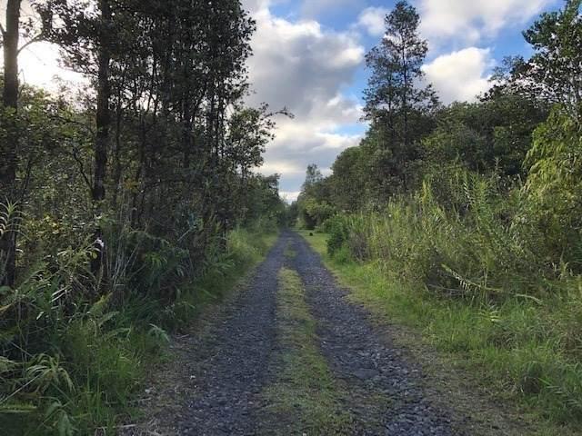 Uau Rd (Road 5), Mountain View, HI 96771 (MLS #640444) :: Elite Pacific Properties