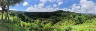 https://bt-photos.global.ssl.fastly.net/hawaii/orig_boomver_1_640758-2.jpg