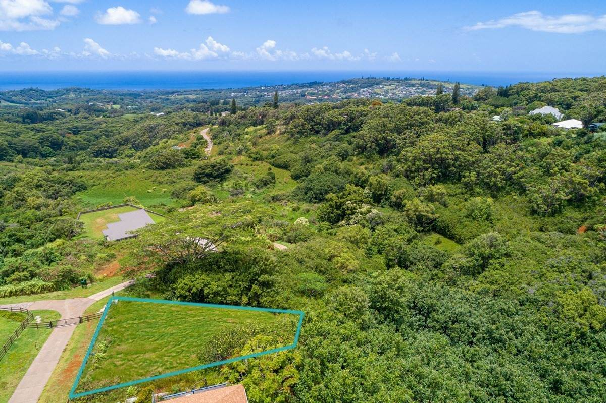 5492 Puulima Rd - Photo 1
