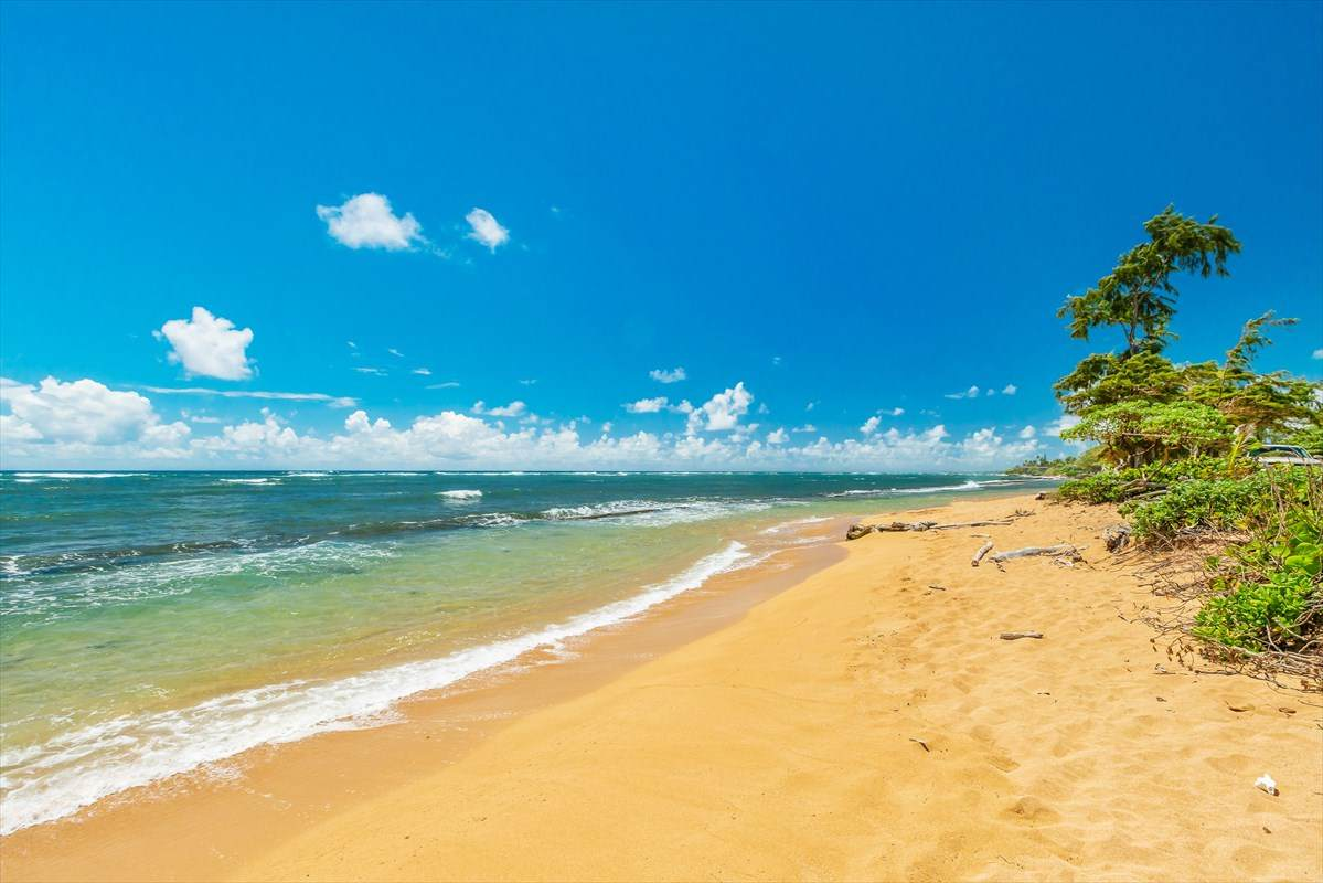 https://bt-photos.global.ssl.fastly.net/hawaii/orig_boomver_1_640991-2.jpg