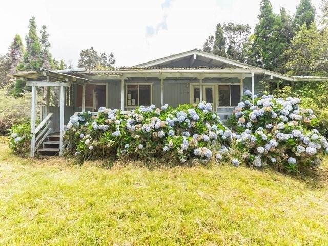 19-3963 Laukapu Ave, Volcano, HI 96785 (MLS #641065) :: LUVA Real Estate