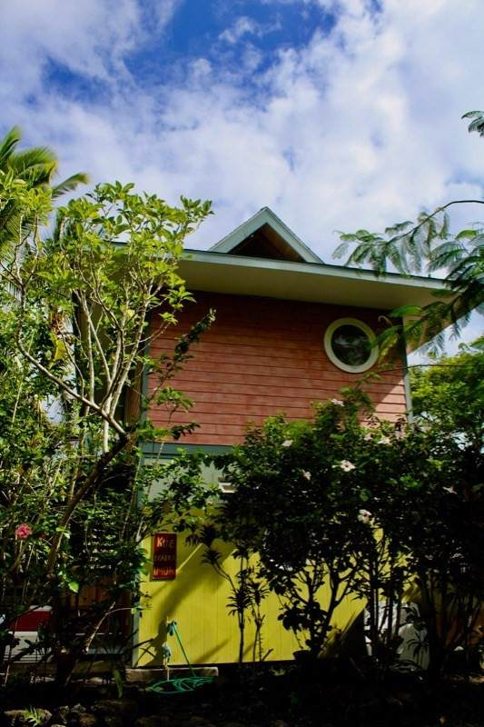 12-7833 Kalapana Kapoho Beach Rd, Pahoa, HI 96778 (MLS #641103) :: Aloha Kona Realty, Inc.
