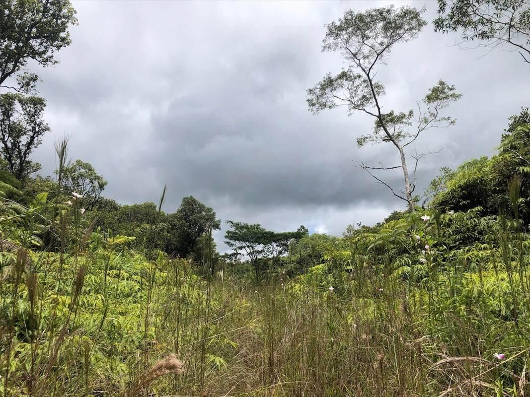 https://bt-photos.global.ssl.fastly.net/hawaii/orig_boomver_1_641138-2.jpg