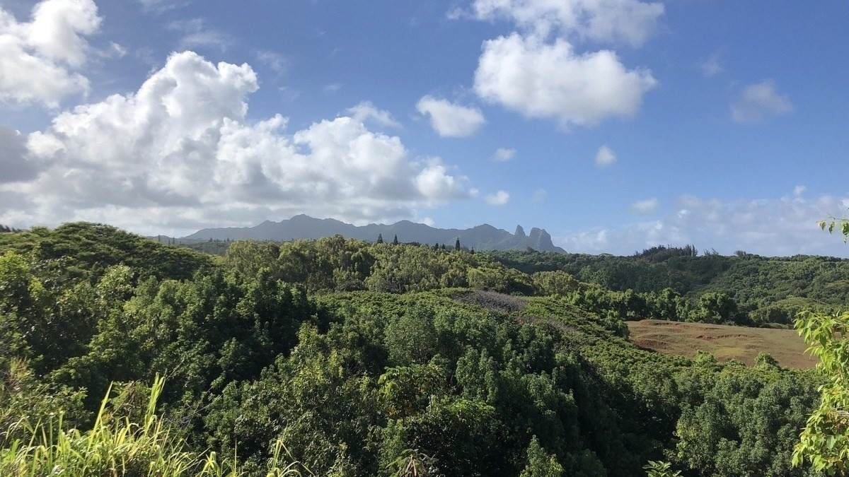 https://bt-photos.global.ssl.fastly.net/hawaii/orig_boomver_1_641602-2.jpg