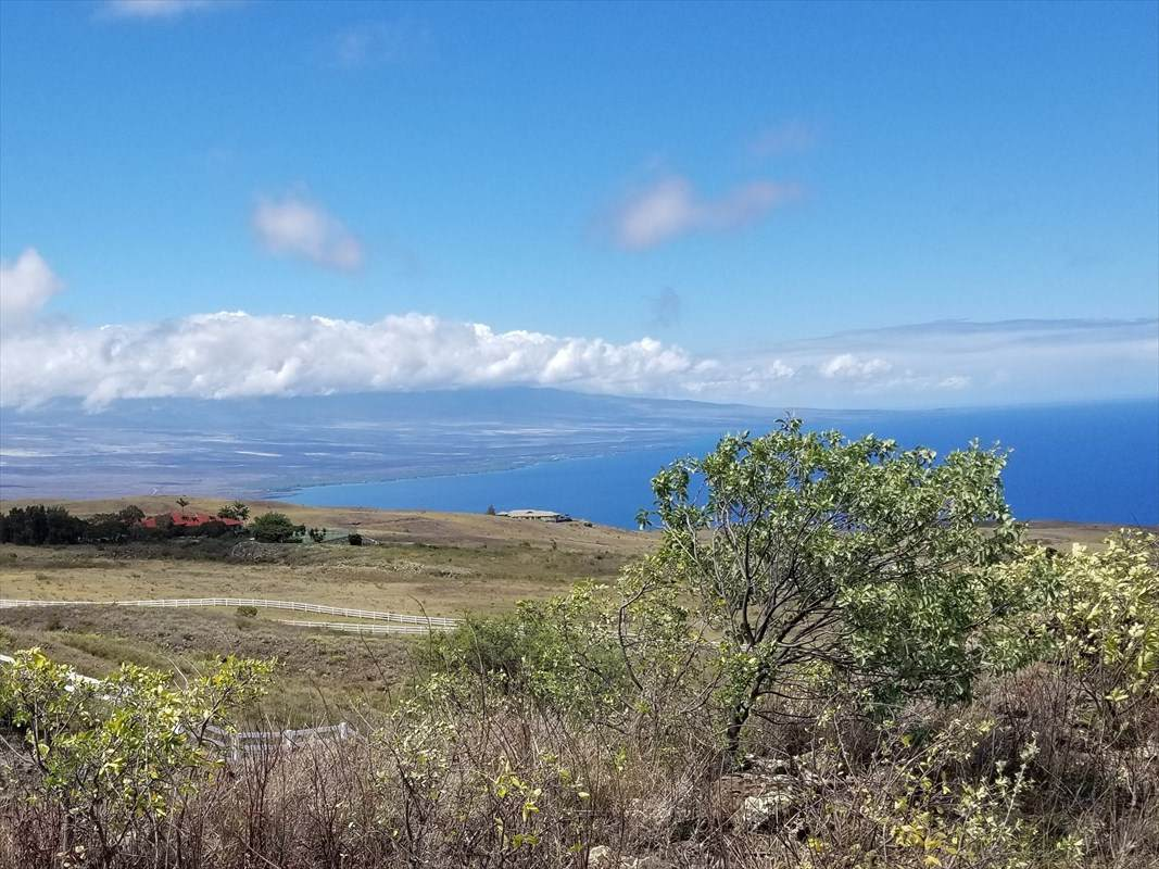 Kohala Ranch Rd - Photo 1