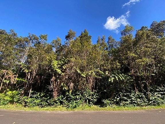 11TH ST, Volcano, HI 96785 (MLS #642002) :: Iokua Real Estate, Inc.