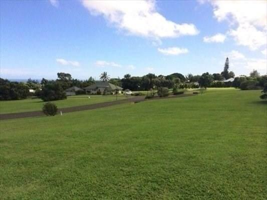 54-3708 Lehuula Cir, Kapaau, HI 96755 (MLS #642421) :: Aloha Kona Realty, Inc.