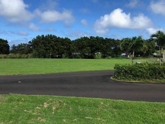 54-3713 Lehuula Cir, Kapaau, HI 96755 (MLS #642446) :: Aloha Kona Realty, Inc.