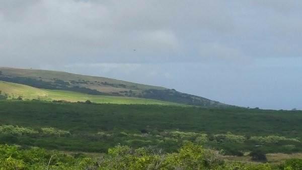 https://bt-photos.global.ssl.fastly.net/hawaii/orig_boomver_1_642550-2.jpg