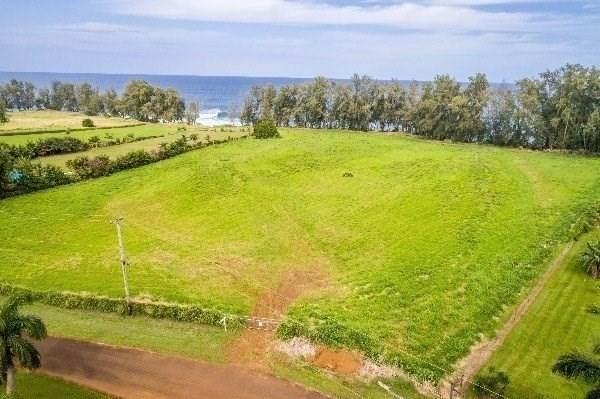 Address Not Published, Papaikou, HI 96783 (MLS #642770) :: Corcoran Pacific Properties